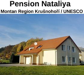 Pension Nataliya - Ubytování Ostrov nad Ohří